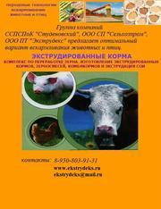 Продажа экструдированных кормов для живытных